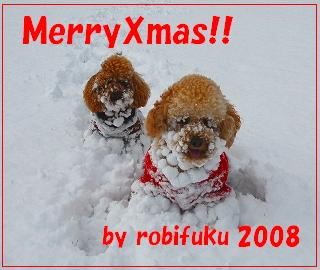 s-robifuku14.jpg